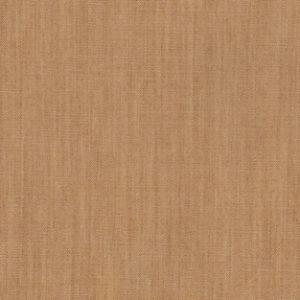 Art Gallery - The Denim Studio - Adobe Clay