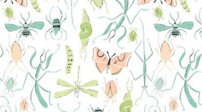 Dear Stella - Perch - Pollinators