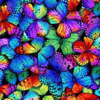 Timeless Treasures - Butterfly Magic - Bright Butterflies